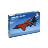 """Jaguar GR.3 """"Big Cat"""""""